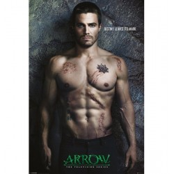 Poster Arrow Modele 1
