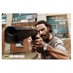 Poster The Walking Dead Modele 5