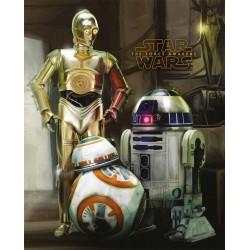 Poster Star Wars 7 Modèle 6