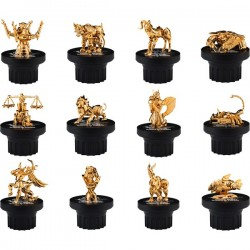 TAMASHII EXCLUSIVE Gold Cloth (12)