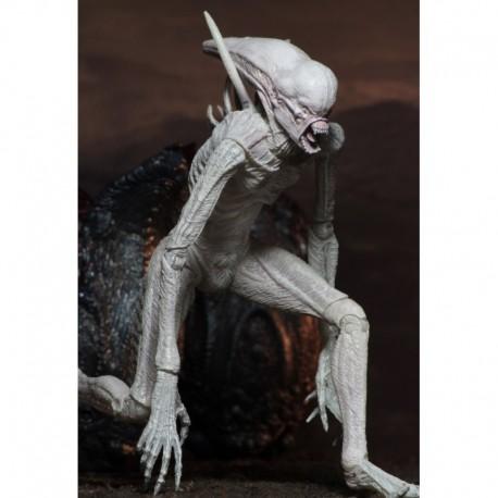 Alien Covenant Neomorph