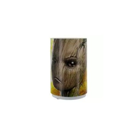 M A Groot Mini Light With